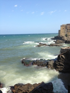 Not many stop to admire this spot near Hammamet.